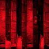 _2006.10.19 - 1254-2-03-2-R. India-Khajur(barrio). (David Velasco.) Tags: abstracto cuadrado rojo
