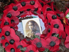 6796 A wreath for a young man (Andy - Busyyyyyyyyy) Tags: 20170108 horsell poppies ppp remembrance soldier sss wreath ww1 www