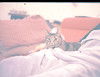 (sрktwo) Tags: kodak kodakfilm kodakcolor slide positive ektachrome 100 ektachrome100 canon 1v eos1vhs 50mm af canon50mm scavanged fastapertures cat amsterdam