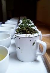 cata de 15 ts de Japn (Tetere Barcelona) Tags: japanesetea teameet tetere teaworkshop tetereria teataste tallerdete teacourse tejapones  catadete actividadesdete