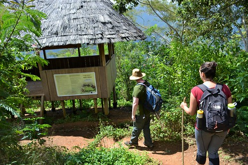 Approaching the platform where we announced our arrival into Wae Rebo village.