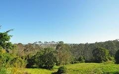 1233 Bangalow Road, Clunes NSW