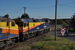 Yennora 2154 arrival (highplains68) Tags: railroad sydney rail railway australia nsw newsouthwales aus freighttrain 2154 sydneytrains 42202 42107 422class 421class yennora
