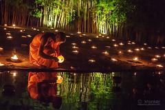 wat_pantao_27r (khunkay's gallery) Tags: beautiful festival lights bokeh เชียงใหม่ บวช พระ yeepeng เทียน โบเก้ เณร จุดเทียน สวดมนต์ วัดพันเตา ระเบิดซูม นั่งสมาธิ ผางประทีป วันพระ พุทธบูชา