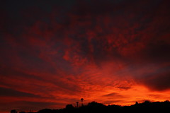 Sunset 7 2 15 #85 (Az Skies Photography) Tags: sunset red arizona sky orange cloud sun black rio yellow set skyline clouds canon skyscape eos rebel gold golden twilight dusk 14 salmon july az rico safe nightfall 2015 arizonasky arizonasunset riorico rioricoaz t2i 71415 arizonaskyline canoneosrebelt2i eosrebelt2i arizonaskyscape 7142015 july142015