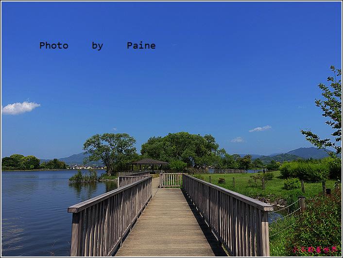 和歌山大池遊園-平池綠地公園 (38).JPG
