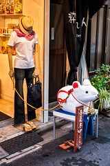 IMG_5738 - Tokyo (Alessandro Grussu) Tags: city topo japan shop canon mouse tokyo asia capital hauptstadt laden negozio stadt 5d capitale giappone citt maus