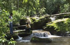 DSC00533.1 (mariaschivster) Tags: friends fish amigos boys water ro river de landscape waterfall fishing bravo stream outdoor sunday peaceful valle nios rod pesca cascada caa chavos