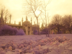 Royal Pavilion Brighton - infrared (4foot2) Tags: c5060 brighton pavillion royalpavillion olympus olympusc5060 infrared infraredfilter digitalinfraredphotography highpassfilter highpass lowpass lowpassfilter hotmirror streetphoto streetshot street streetphotography 2016 fourfoottwo 4foot2 4foot2photostream 4foot2flickr
