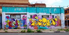 Rolling Stevens (Mr Baggins) Tags: ladyaiko mein graffiti streetart johannesburg jozi