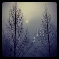 陽を塞げ 秘め隠せ雪 白日夢[山乃鯨] #photoikku #haiku #jhaiku #winter #冬 #via_me #フォト俳句 #photohaiku #japan #poetry #写真俳句 (Atsushi Boulder) Tags: 俳句 poem verse photo 五七五 雪 季語 photoikku haiku jhaiku winter 冬 viame フォト俳句 photohaiku japan poetry 写真俳句