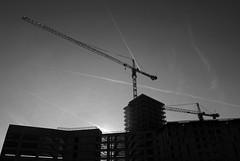 Rohbau (Andreas Meese) Tags: hamburg nikon d5100 rohbau hochhaus skyscraper bau kran kräne cranes hafencity gegenlicht