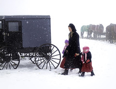 Amish Mother and Daughters (crabsandbeer (Kevin Moore)) Tags: amish auction horse mennonite mudsale pa pennsylvania people rawlingsville rawlinsville snow spring winter buggy lancaster weather
