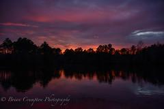 "Vibrant Sunset (briancrumpton74) Tags: penumbral lunar eclipse full ""snow"" moon vibrant sunset nikond810 nikon28300mm"