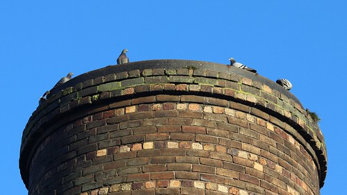 Pottery Pigeons
