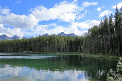 Quiet Cove (Patricia Henschen) Tags: afternoon clouds cloudy boreal forest lake lac herbert banff banffnationalpark nationalpark parkscanada parks parcs mountains mountain rockymountains rockies rocky northern canadian canada canadianrockies reflection reflections water lakelouise alberta icefieldsparkway bowrange