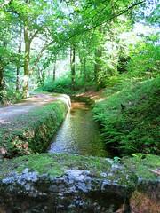 La rigole de la Montagne (Doonia31) Tags: rigole canal eau ruisseau muret pierres forêt canaldumidi revel france riquet mur sentier chemin calme nature histoire arbres