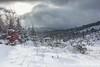 Harz im Winter (johannesotte84) Tags: harz otte canon winter snow schnee brocken landschaft wandern hiking deutschland