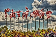 sometimes a photo is just a photo.....it has no political basis.....it is simply my vision.....Slider Sunday.... (Little Hand Images) Tags: flags usaflag slidersunday colourful extremecolour trees sky clouds