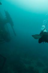 IMG_7266 (Stig Sarre) Tags: thistlegorm red sea redsea egypt scuba diving scubadiving dykking wreck vrak