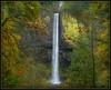 Latourell Falls II (Ernie Misner) Tags: waterfall falls columbiagorge multnomahfalls oregon erniemisner nikon d800 nik pscc capturenx2 cnx2 hoyahd3polarizer f8andhangbythefalls