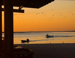COMING HOME (peke_cheeks) Tags: sunset portugal olhao