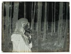 """Robert Demachy, """"Femme à l'orée d'un bois"""", v. 1900, négatif sur verre au gélatino-bromure d'argent, coll. SFP."""