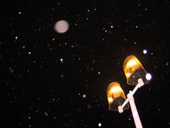 last night i saw them in the snow... (ion-bogdan dumitrescu) Tags: snowflake light orange snow black night dark pole lightpole bitzi ibdp findgetty ibdpro wwwibdpro ionbogdandumitrescuphotography