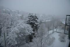 saturday, all day snowing (Dreamer7112) Tags: snow 20d schweiz switzerland europe suisse canon20d zurich canoneos20d snowing zrich svizzera winterwonderland eos20d zurigo limmatwest latemarchsnow