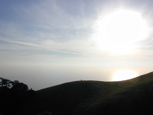 View of the Pacific from Mt.Tam
