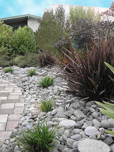 NZ Landscape Design. NZLANDSCAPES.COM. Garden Photos New Zealand. Dry River  Garden