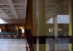 (emdot) Tags: windows window library librariesandlibrarians ll100