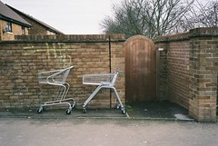 Troll(ey)s (Mister Phill) Tags: abandoned shopping delete9 delete5 delete2 delete6 trolley delete7 save3 delete8 delete3 delete delete4 save save2 cart folly urbscape anticulture deletet10