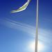 Flag pole shade