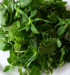Mint was originally used as a medicinal herb to treat stomach ache and chest pains. (Something developers eating too much pizza know a bit too well)