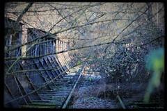 Adventsspaziergang (Hagen Herzog) Tags: magdeburg rotehorn brigde brücke hrd vergessenesmagdeburg kanonenbahn