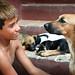 子犬:Face-to-face...