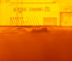 Bayside Canning Company, Alviso - by /\/\ichael Patric|{