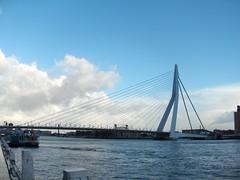 Rotterdam Bridge-Rotterdam Netherlands (trexcali) Tags: rotterdam erasmusbrug