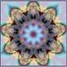 kirlian daisy