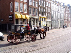 Amsterdam Horse and Buggy