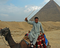 camel ride vendor