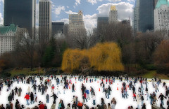 Central Park Surrealism - Orton on Ice - by Foto Iervolino