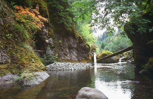 Brice Creek Mining Claim, Oregon