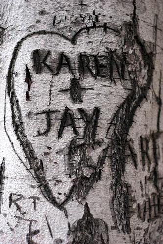 Tree, Karen + Jay / Art is evil