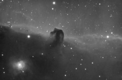 Horsehead nebula (-mrh) Tags: astrophotography orion horsehead b33 st8xme stf7 Astrometrydotnet:status=solved Astrometrydotnet:version=11006 Astrometrydotnet:id=alpha20090420834937
