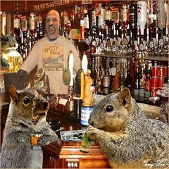 The NUTS GATHER INN (Terry_Lea) Tags: squirrel squirrels photoshopfun tbas