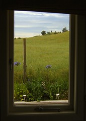 view throught the window (EssjayNZ) Tags: newzealand 15fav green window 510fav scenery picturesthroughholes lovely1 meadow 2006 pasture vista fields essjaynz tirau paddock 111v1f 77points interestingness205 taken2006 explore13jan06 i500 100p sarahmacmillan