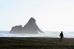 Karekare Beach 1 (imagesnzimages) Tags: new zealand auckland karekare beach west coast scenic newzealand westcoast karekarebeach
