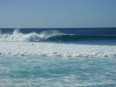 Banzai Pipeline 37 (buckofive) Tags: hawaii oahu northshore banzaipipeline ehukaibeachpark surfing bigwavesurfing surfer beach waves surf